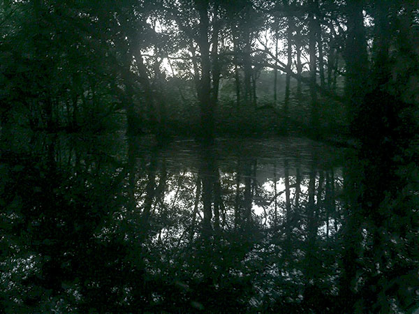 暗い中を漕ぎ進む