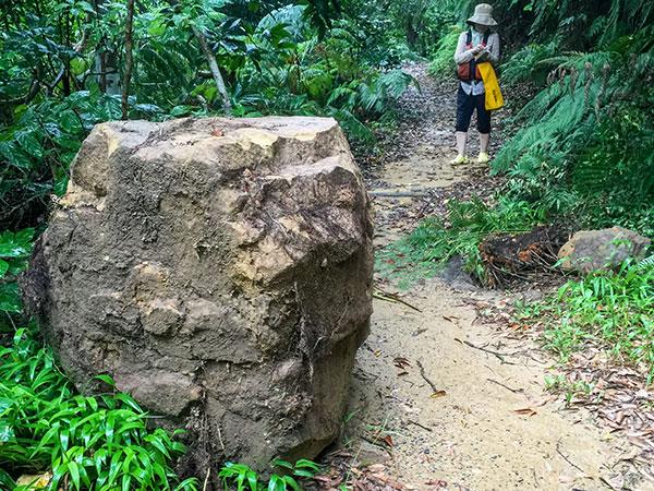 ウタラ川の落石